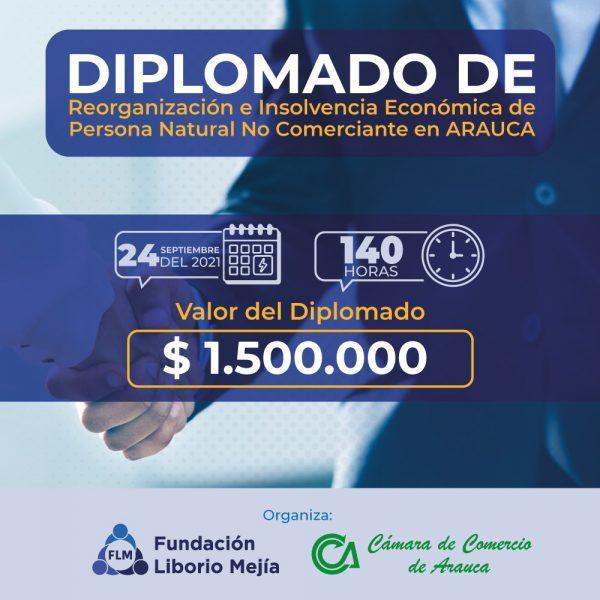 Diplomado-de-insolvencia-arauca